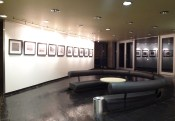 exhibition-photo-prints-wall