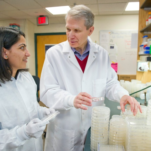 Kim Lewis and a student work in a lab.