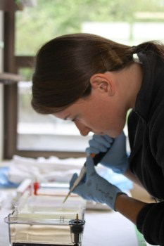 Female student using a pipette in a lab.