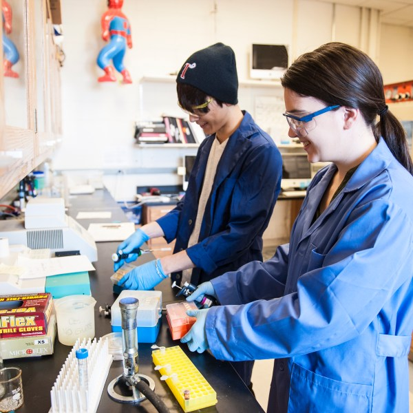 A male and female student prep to pipette solutions at the lab bench.
