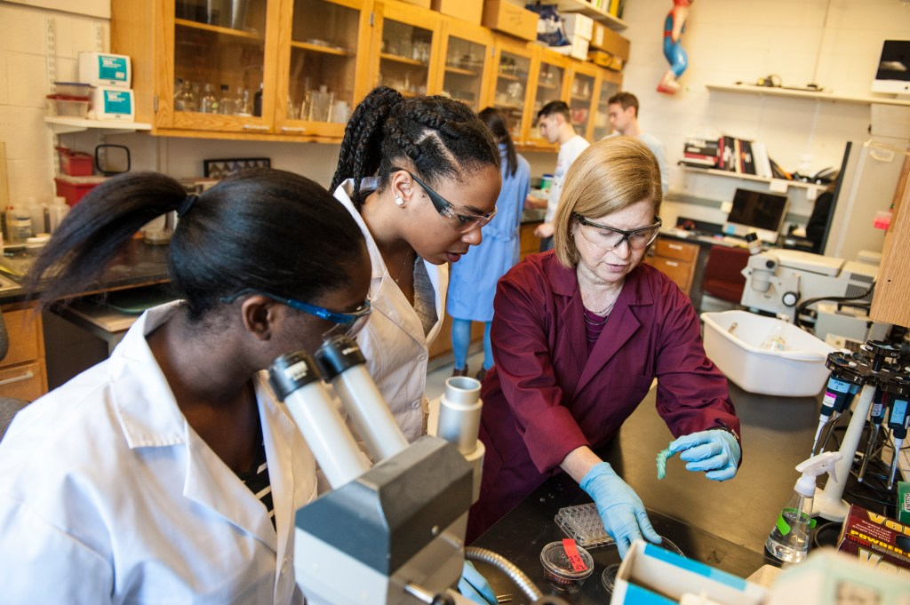 Two female students watch Professor Wendy Smith handle a caterpillar specimen in lab. The students and Professor Smith work at a lab bench. Another group of students works on the experiment in the background.