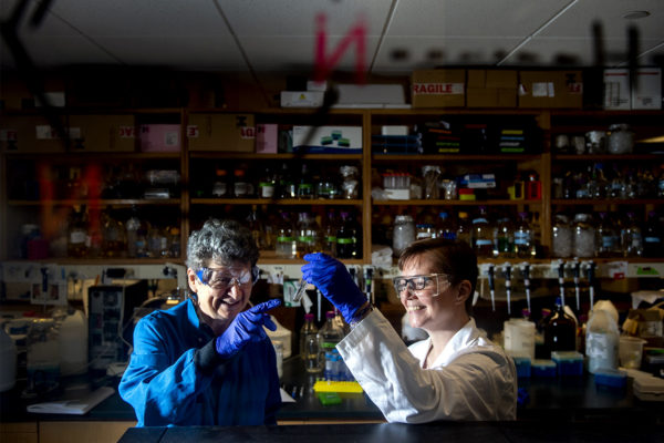 08/13/19 - BOSTON, MA. - Penny Beuning and Mary Jo Ondrechen work in their lab in Hurtig Hall on August 13, 2019. Beuning and Ondrechen analyze amino acids to to create a new way of identifying what different proteins in our body do. Photo by Ruby Wallau/Northeastern University