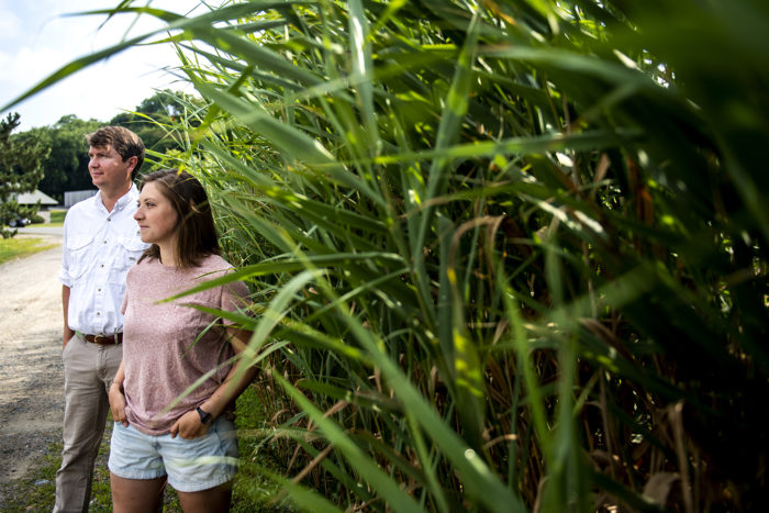 08/07/19 - BOSTON, MA. - Steven Scyphers, assistant professor of marine and environmental sciences, and student Kiera O'Donnell pose for a portrait at the Marine Science Center in Nahant on August 07, 2019. Scyphers has received a grant from the Nature Conservancy to study the impact of Hurricane Michael in collaboration with colleagues at the U.S. Naval Academy. Photo by Ruby Wallau/Northeastern University