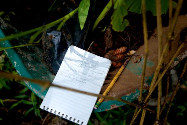 The notebook of Jessica Slevin lays on a wheelbarrow with plants and bare roots.