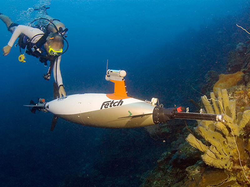 Example of the type of small autonomous underwater vehicle that will be used for this project. Image courtesy of Bonaire 2008: Exploring Coral Reef Sustainability with New Technologies.