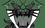 Diseño Puma