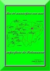 municipios con más superficie