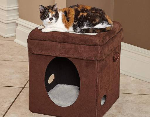 Mejores camas para gatos