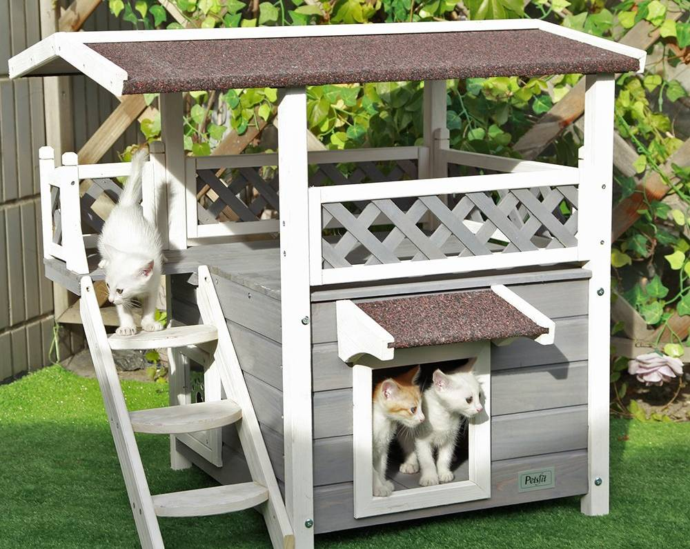 Mejores casas para gatos