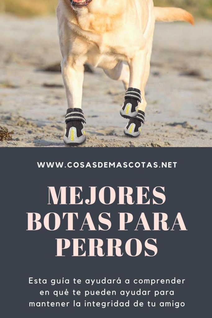 Las mejores botas para perros de 2020 (Análisis) 2