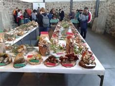 Exposición jornadas micologicas en los toriles-1