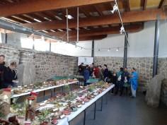 Exposición jornadas micologicas en los toriles