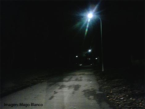 enebro-con-luz_2