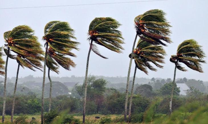 Los ciclos de la marea o la latitud también influyen en la aparición del viento