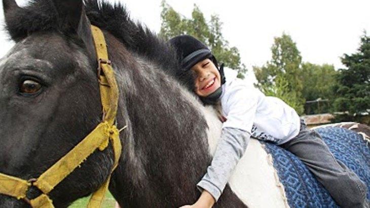 En esta imagen se puede observar claramente la interacción entre el paciente y el caballo.