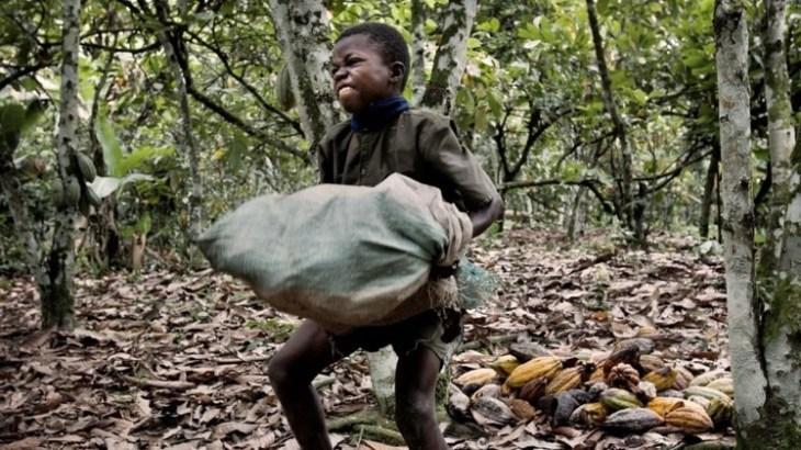Los niños que transportan cargas pesadas pueden sufrir hernias o heridas en el cuerpo.