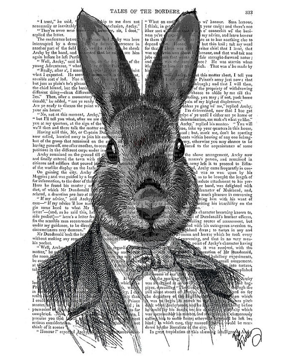rabbit in suit