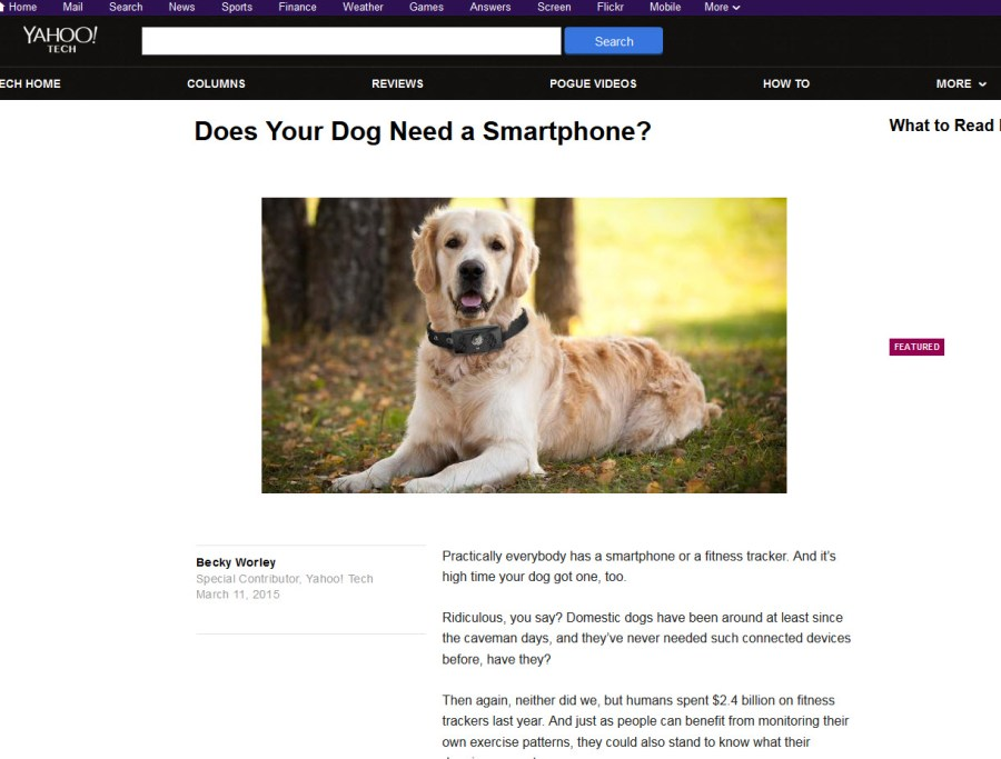 Dogs and Smartphones