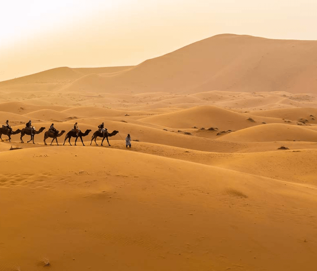 Travel in 2018 • Merzouga, Morocco © Shutterstock