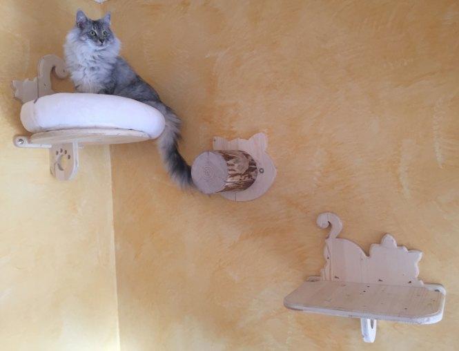 Serie Volare - Composizione con cuccetta da parete, gradino e ripiano