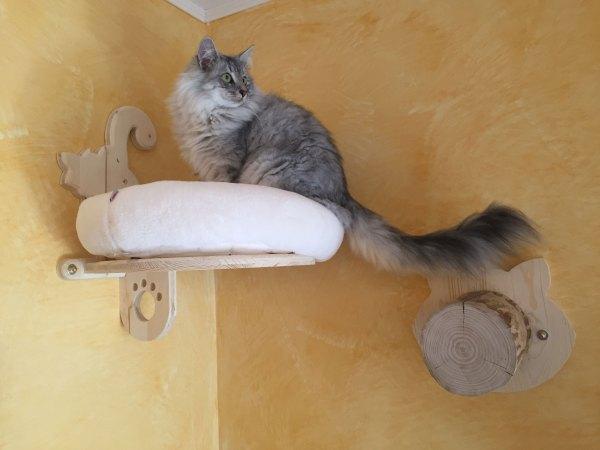 """cuccetta """"gattino vanitoso"""" con cuscino e gradino con base sagomata"""