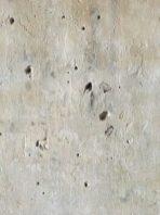 Segno dei rami di gelso usati per la bachicoltura