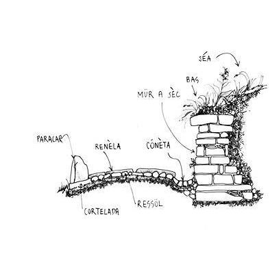Disegno Muro a secco bergamasco