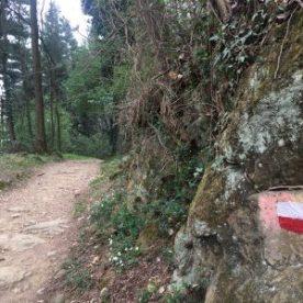 Percorso in collina Tapasciata Sotto il Monte