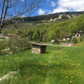 14-arnosto-monte