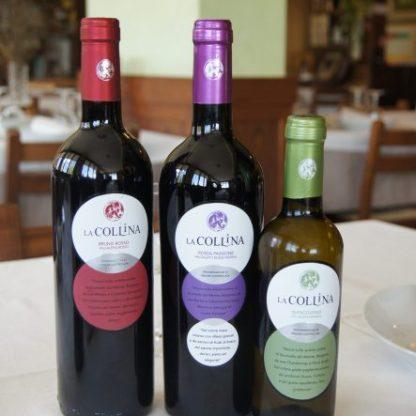Bottiglie di Valcalepio