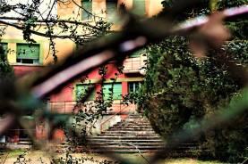 La scalinata di Sciesopoli vista dalla rete