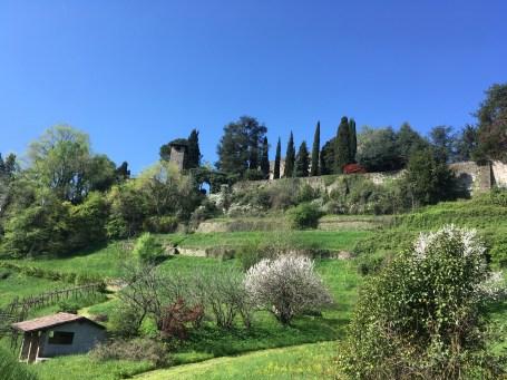 Il parco privato di Palazzo Moroni