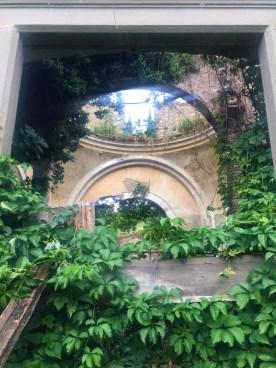 10 la vegetazione che invade l'antica chiesina
