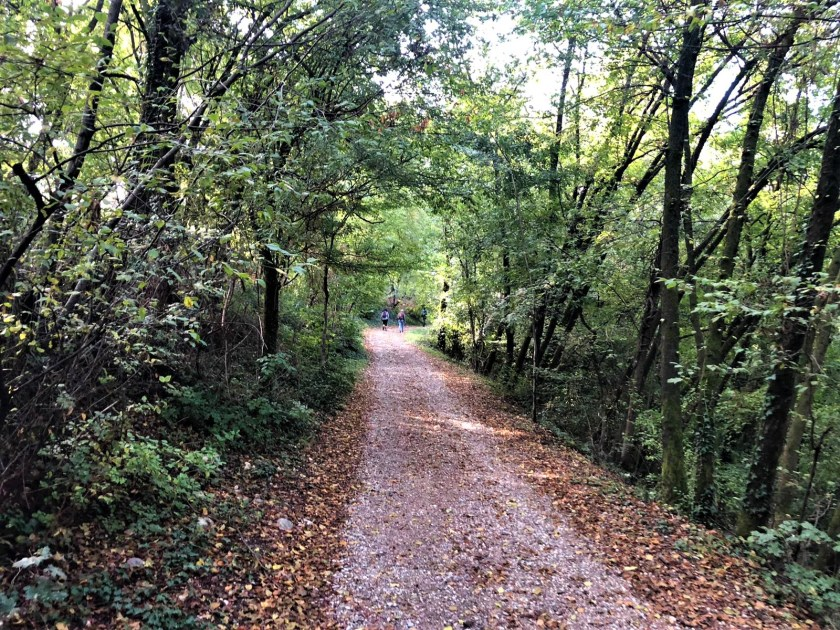 Nel bosco durante l'apertura del Cammino del Vescovado.jpg