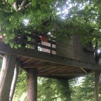 Casa sull'albero orizzontale