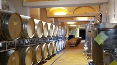 Eligio Magri cantina e botti vino