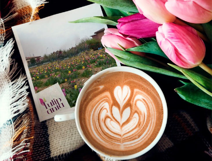 Tulipani e caffè_copertina