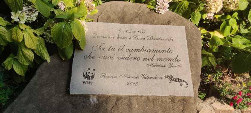 2 WWF