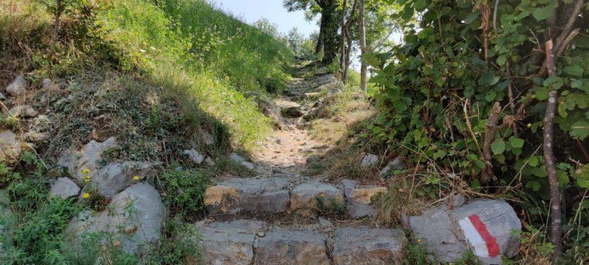 sentiero 505 verso la cima del Monte Zucco