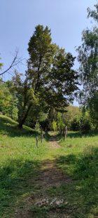 sentiero escursione Monte Zucco