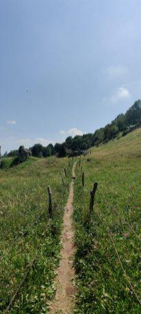 Sentiero verso la cima del Monte Zucco