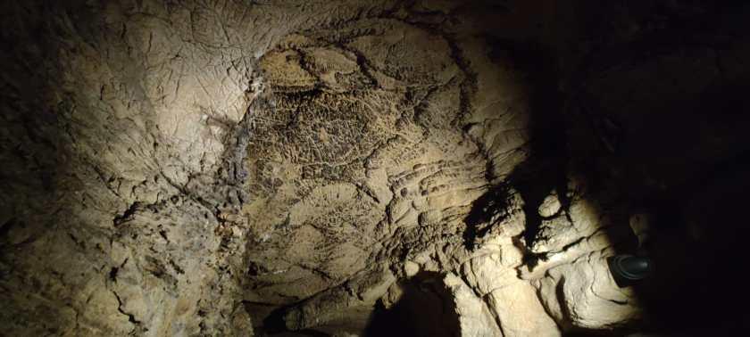 Cupola annerita dai pipistrelli