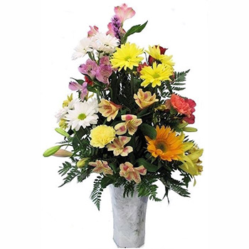 Flowers to Send to the Home