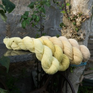 Plant dyed fingering singles