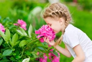 Mirosul schimbă procesarea memoriei și ar putea trata traumele
