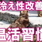 【京都 美容 健康 ダイエット】効果テキメン!温活習慣♪