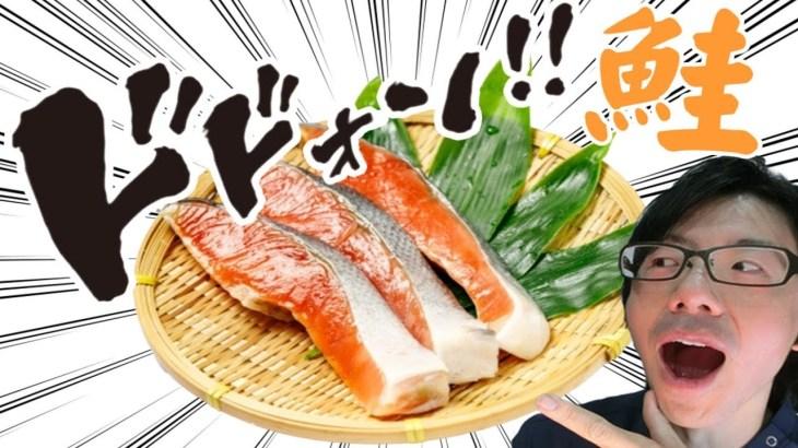 鮭の驚きのパワー!美肌効果やダイエット効果も!?