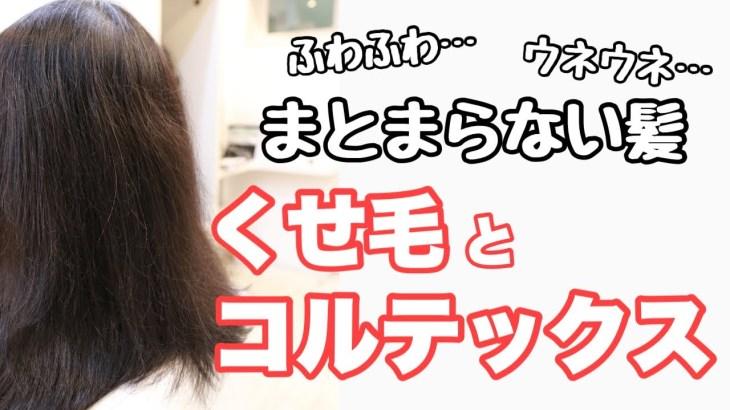 髪の仕組み〜マクロフィブリル・コルテックス編〜