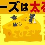 【ゆっくり解説】チーズがダイエットに良い理由と健康効果