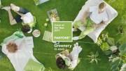 Greenery a cor do ano de 2017